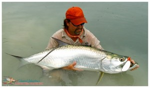 A nice tarpon caught on a rainy day at Casa Blanca Lodge