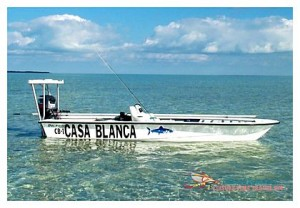 Dolpin Skiff at Casa Blanca Lodge