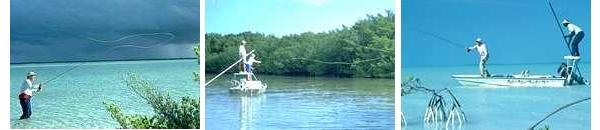 Bahamas Fly Fishing Adventures