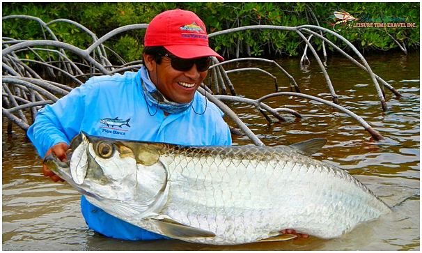 Tarpon at Playa Blanca Lodge