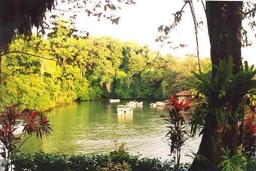 Aguila De Osa Inn : Costa Rica