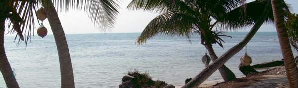Beautiful beach front property of Long Caye Island Resort