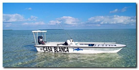 Casa Blanca Lodge Dolphin Super Skiff