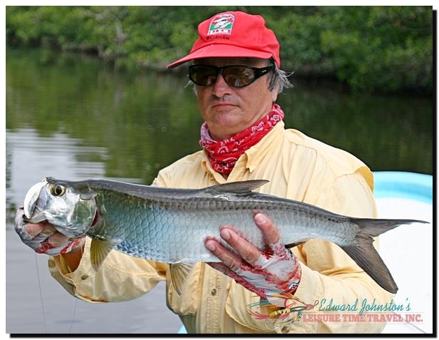 Campeche Tarpon Isla del Sabalo Yucatan, Tarpon Fishing