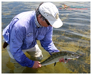 Releasing a nice Grand Bahama bonefish on Grand Bahama Island