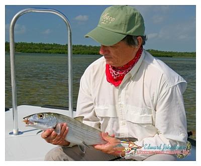 Abaco Lodge : Edward Johnston with a fine Abaco bonefish , Bonefishing Great Abaco Island