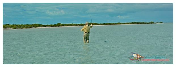 Abaco Island Bahamas : AbacoLodge, Bonefishing Great Abaco Island
