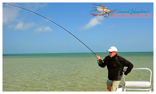 BBlack Fly Bonefish Lodge Abaco Islan Bahamas