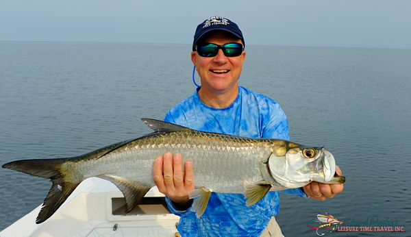 Campeche Tarpon Fishing