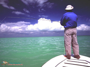 Leisure Time Travel, Caribbean Fly Fishing Trips
