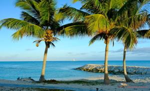 Crooked Island Lodge, Bahamas, Crooked Island Lodge Rates